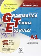 Grammatica teoria esercizi. Vol. A1-A2-B. Prove ingresso. Per le Scuole superiori ROM. Con DVD