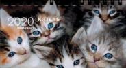 Kittens 2020. Agenda settimanale spiralata small