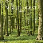 Calendario 2021 Forest 30x30