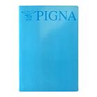 Confezione 10 Maxi Quaderni a quadretti 5mm formato A4 - azzurro