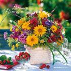 Calendario 2016 flowers