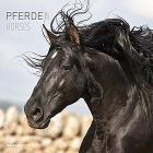 Calendario 2019 Horses 30x30 cm
