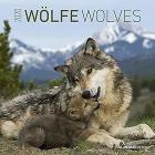Calendario 2020 Wolves 30x30 cm