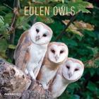 Calendario 2016 Owls