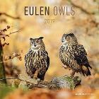 Calendario 2019 Owls 30x30 cm