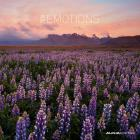 Calendario 2016 Emotions 206