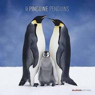 Calendario 2021 Penguins 30x30