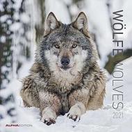 Calendario 2021 Wolves 30x30