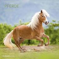 Calendario 2020 Horses 30x30 cm