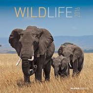 Calendario 2016 Wildlife