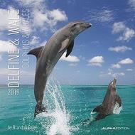 Calendario 2019 Dolphins and Whales 30x30 cm