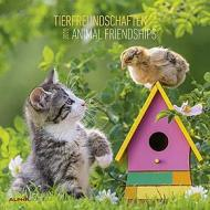 Calendario 2020 Animal Friendship 30x30 cm