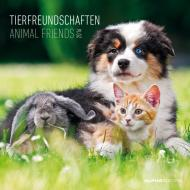 Calendario 2016 Animal Friends