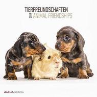 Calendario 2019 Animal Friendship 30x30 cm
