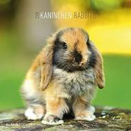Calendario 2020 Rabbits 30x30 cm