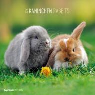 Calendario 2016 Rabbits
