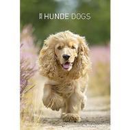 Calendario 2020 Dogs 23,7x34 cm