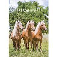 Calendario 2020 Horses 23,7x34 cm