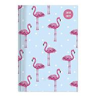 Agenda 2018-2019 giornaliera 16 mesi Collegetimer Pocket Flamingo