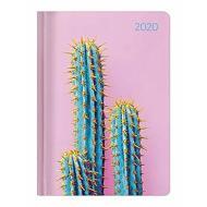 Agenda 12 mesi settimanale 2020 Ladytimer Cactus