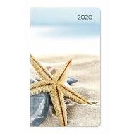 Agenda 12 mesi settimanale 2020 Ladytimer Slim Sea Star