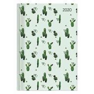 Agenda 12 mesi giornaliera 2020 Style Cactus