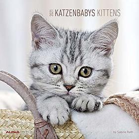 Calendario 2021 Kittens 30x30