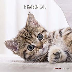 Calendario 2020 Cats 30x30 cm