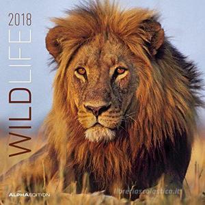 Calendario da muro Animali selvaggi 2018