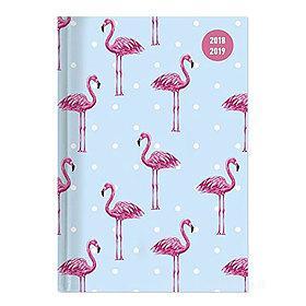 Agenda 2018-2019 settimanale 16 mesi Collegetimer Pocket Flamingo