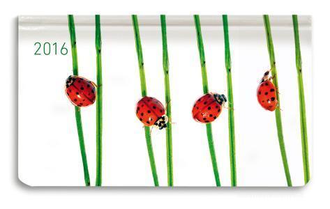 Ladytimer Pad Beetles Agenda Settimanale 2016